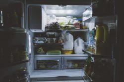 model frigider