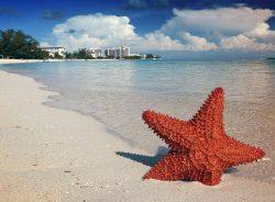 culoare nisip plaja